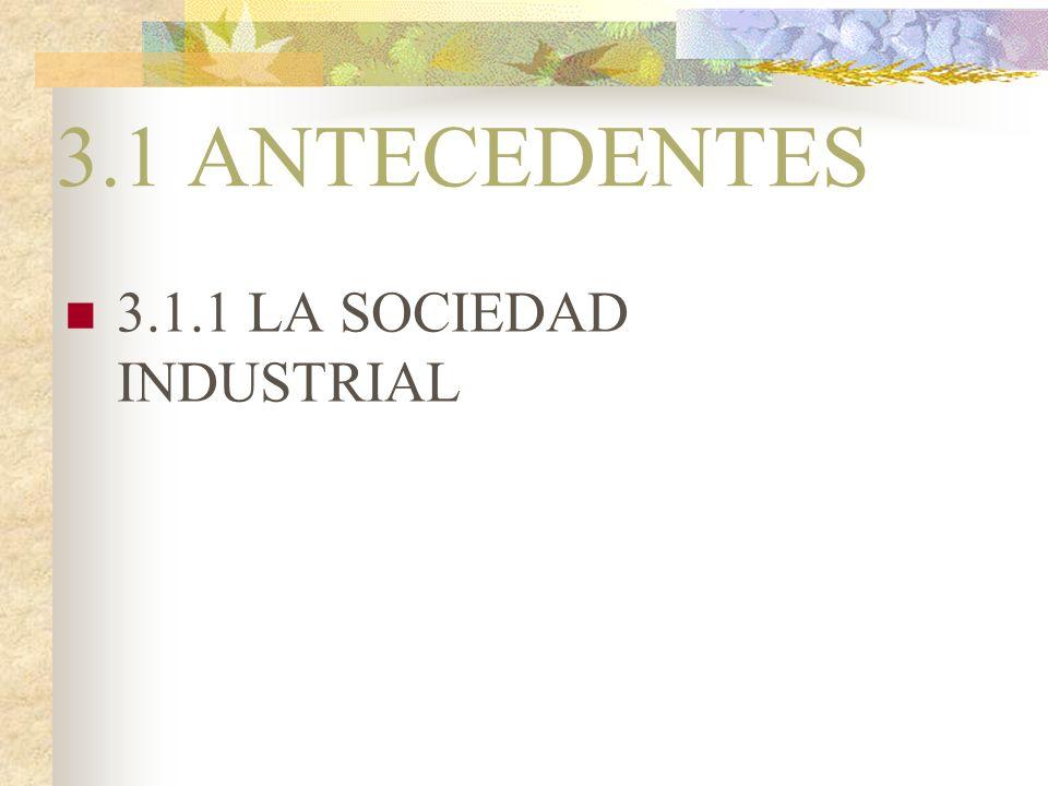 3.1 ANTECEDENTES 3.1.1 LA SOCIEDAD INDUSTRIAL