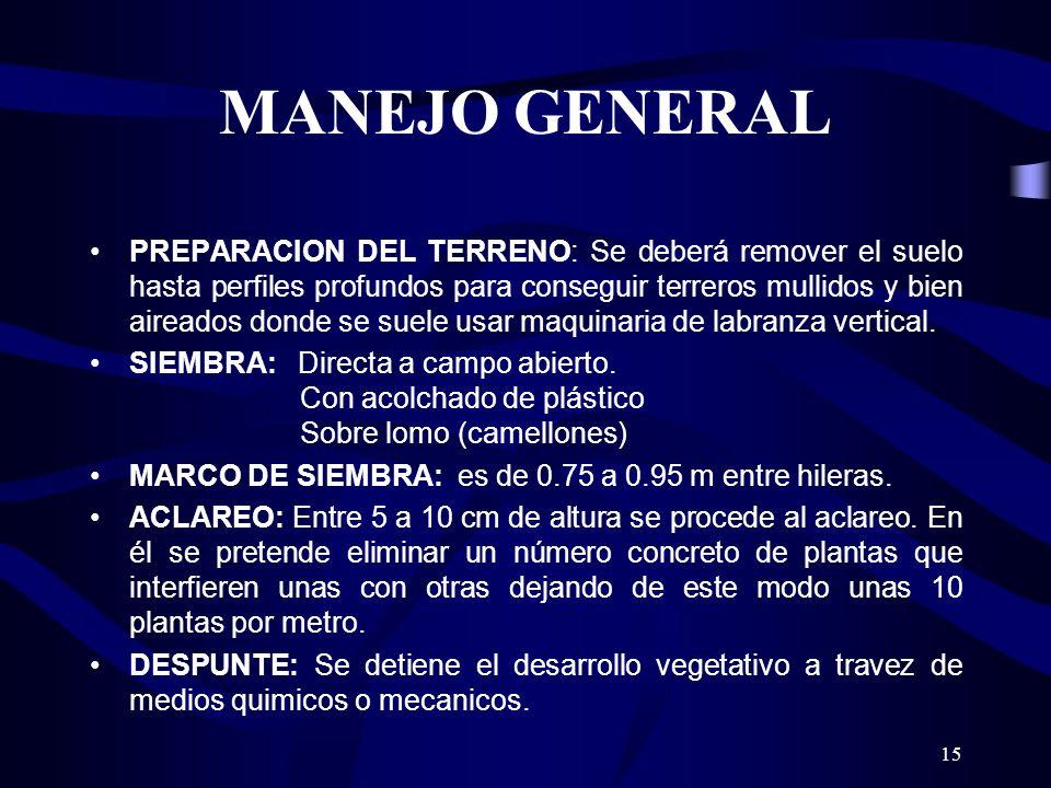 15 MANEJO GENERAL PREPARACION DEL TERRENO: Se deberá remover el suelo hasta perfiles profundos para conseguir terreros mullidos y bien aireados donde