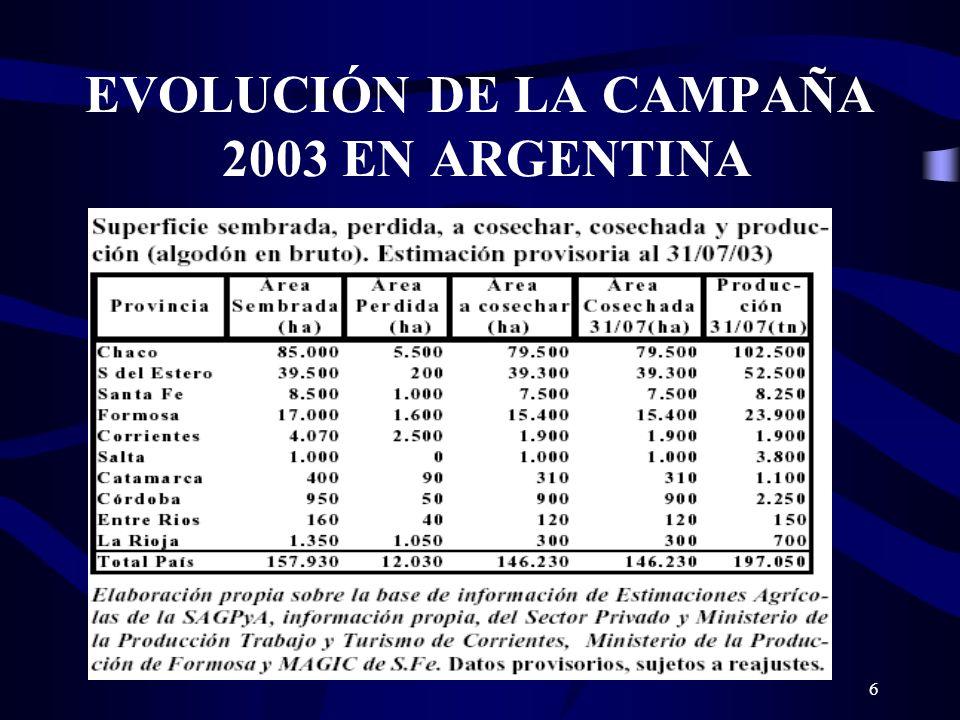 6 EVOLUCIÓN DE LA CAMPAÑA 2003 EN ARGENTINA
