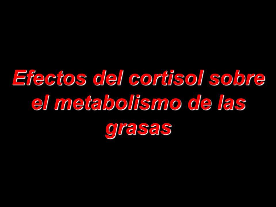 Así pues, quizá muchos de los efectos del cortisol sobre los sistemas metabólicos del organismo obedezcan, en esencia, a la capacidad del cortisol par