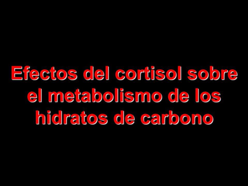 El 95 %, al menos de la actividad glucocorticoide de las secreciones corticosuprarrenales obedece a la secreción de cortisol, también conocido como hi