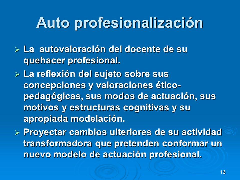 13 Auto profesionalización La autovaloración del docente de su quehacer profesional. La autovaloración del docente de su quehacer profesional. La refl