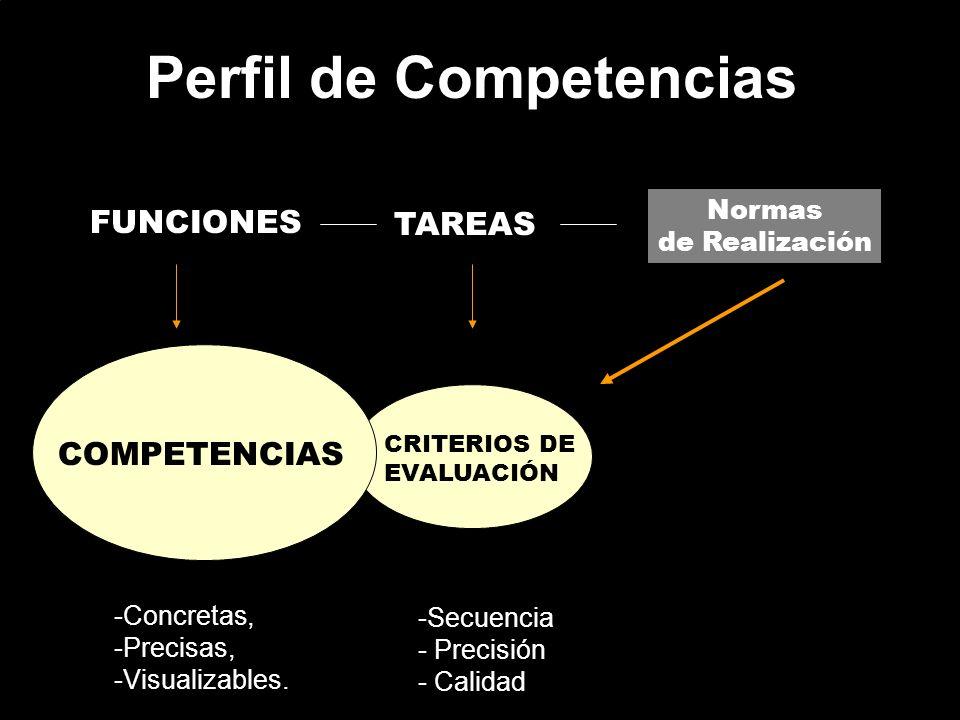Perfil de Competencias FUNCIONES TAREAS Normas de Realización COMPETENCIAS CRITERIOS DE EVALUACIÓN -Concretas, -Precisas, -Visualizables. -Secuencia -