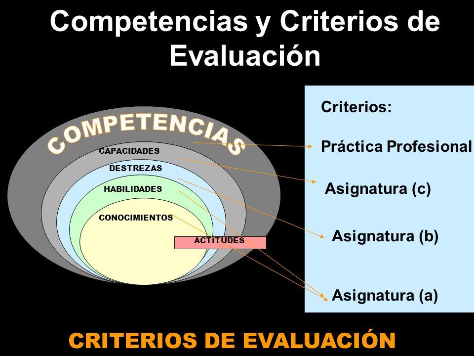 Competencias y Criterios de Evaluación CRITERIOS DE EVALUACIÓN CAPACIDADES DESTREZAS HABILIDADES CONOCIMIENTOS ACTITUDES Criterios: Práctica Profesion