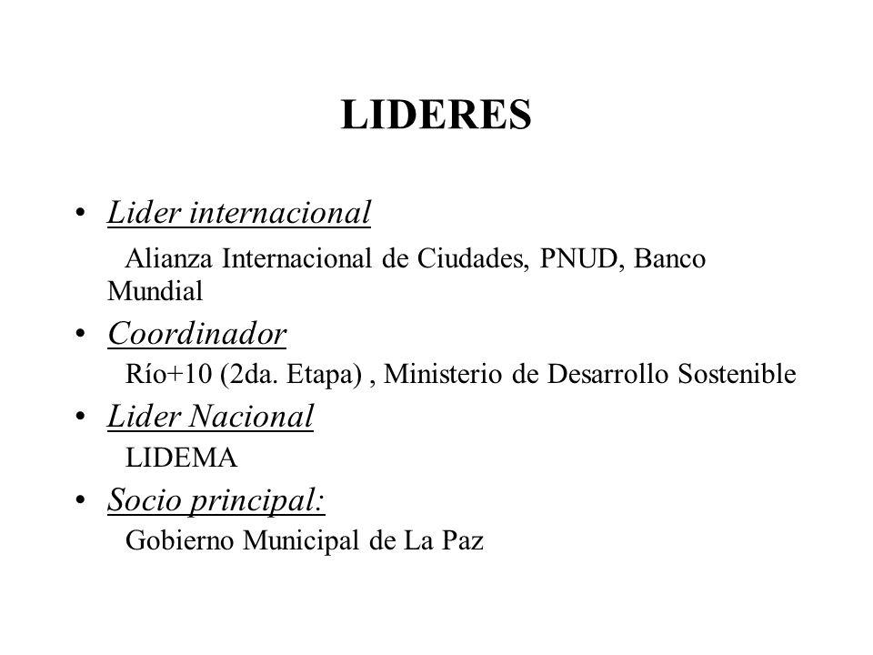 LIDERES Lider internacional Alianza Internacional de Ciudades, PNUD, Banco Mundial Coordinador Río+10 (2da. Etapa), Ministerio de Desarrollo Sostenibl