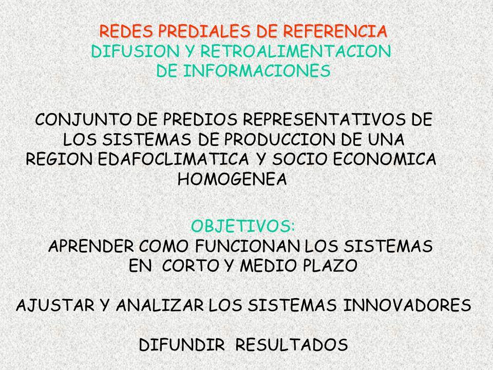 CONJUNTO DE PREDIOS REPRESENTATIVOS DE LOS SISTEMAS DE PRODUCCION DE UNA REGION EDAFOCLIMATICA Y SOCIO ECONOMICA HOMOGENEA OBJETIVOS: APRENDER COMO FU