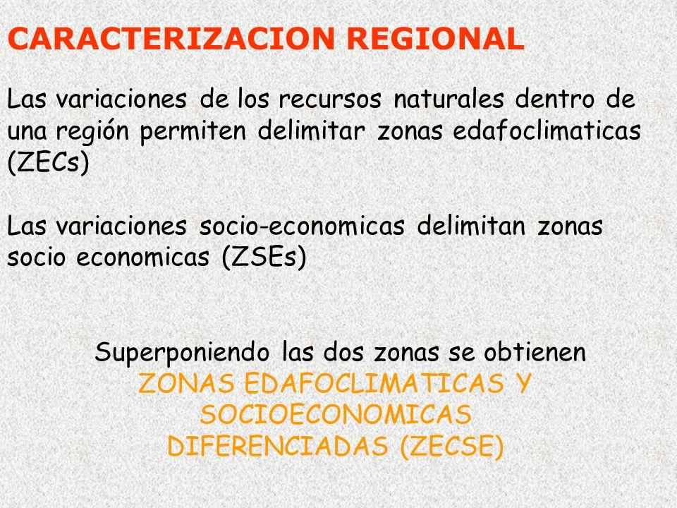 CARACTERIZACION REGIONAL Las variaciones de los recursos naturales dentro de una región permiten delimitar zonas edafoclimaticas (ZECs) Las variacione