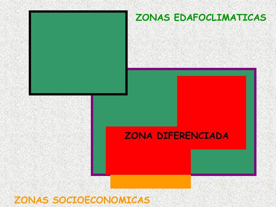 ZONAS EDAFOCLIMATICAS ZONAS SOCIOECONOMICAS ZONA DIFERENCIADA