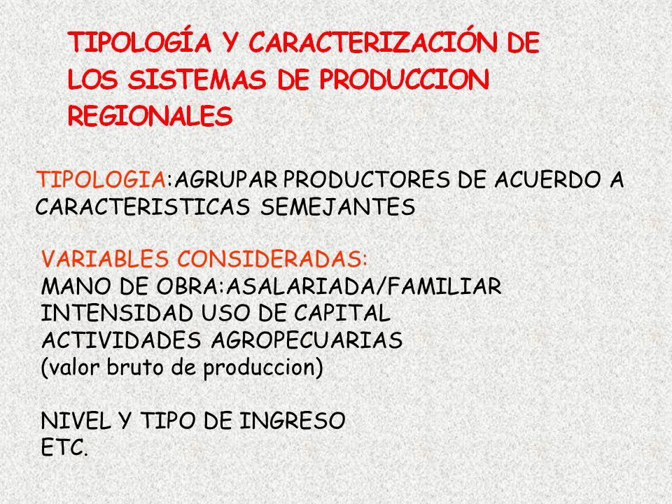 TIPOLOGIA:AGRUPAR PRODUCTORES DE ACUERDO A CARACTERISTICAS SEMEJANTES VARIABLES CONSIDERADAS: MANO DE OBRA:ASALARIADA/FAMILIAR INTENSIDAD USO DE CAPIT