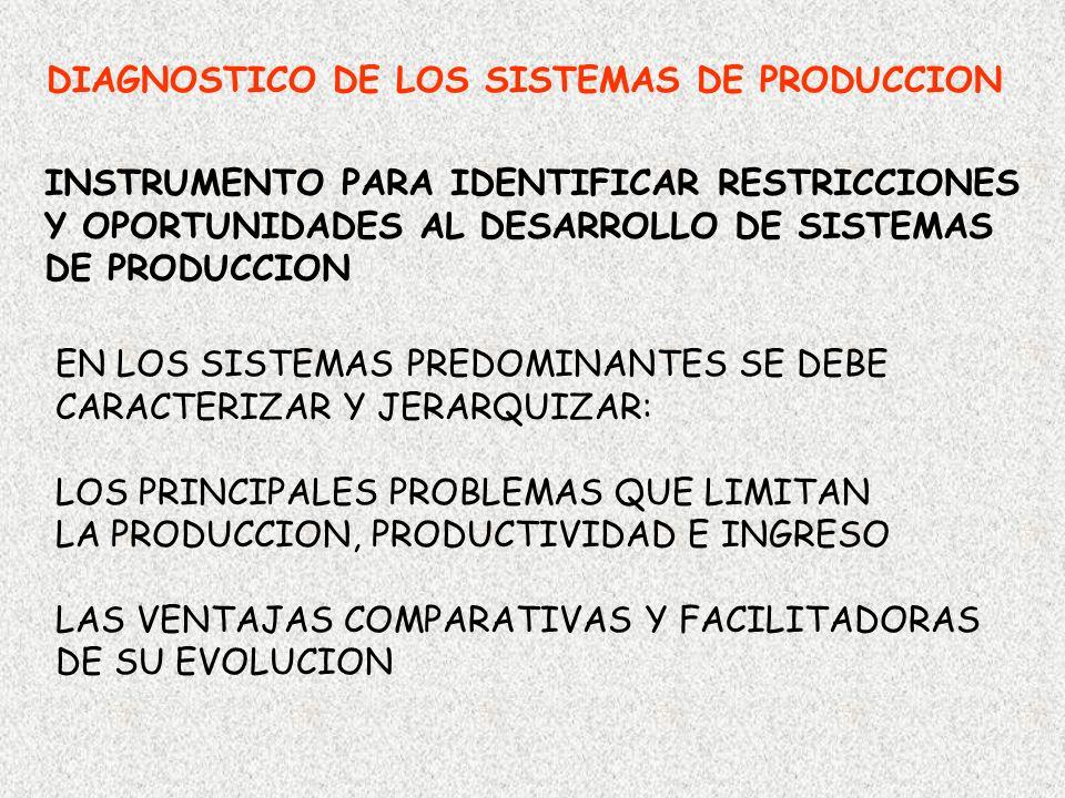 DIAGNOSTICO DE LOS SISTEMAS DE PRODUCCION INSTRUMENTO PARA IDENTIFICAR RESTRICCIONES Y OPORTUNIDADES AL DESARROLLO DE SISTEMAS DE PRODUCCION EN LOS SI