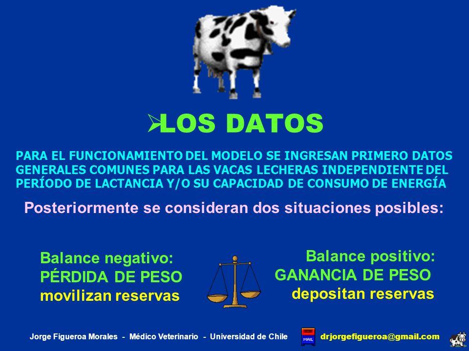 LAS VACAS SE COMPLETA EL INGRESO DE DATOS SEGÚN EL ESTADO DEL CONSUMO PESO corporal (kg) y CONDICIÓN corporal (1 - 5 puntos) POTENCIAL lechero (kg lactancia) Materia GRASA promedio (%) PROTEÍNA láctea promedio (%) PRECIO de la leche ($ kg FPCM) NUMERO de partos (Número) TEMPERATURA ambiente (ºCelcius) ACTIVIDAD corporal (%) LAPSO interparto (días) INPUT Jorge Figueroa Morales - Médico Veterinario - Universidad de Chile drjorgefigueroa @ gmail.com