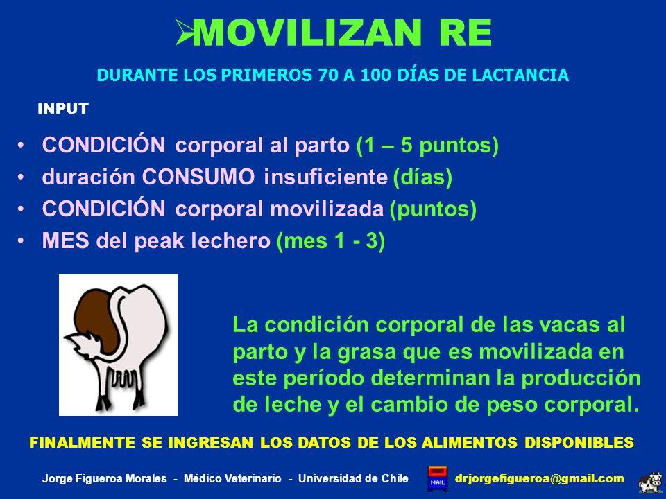 J DAIRY SCI BAKER 1995 Investigaron el efecto de la concentración de proteína, su calidad y degradabilidad sobre la concentración de urea plasmática y los constituyentes nitrogenados de la leche Jorge Figueroa Morales - Médico Veterinario - Universidad de Chile drjorgefigueroa @ gmail.com DIETASCRITERIOS DE BALANCE DE PROTEÍNA DE LA DIETA 12341234 SISTEMA PROTEÍNA CRUDA NRC 1978 SISTEMA PROTEÍNA ABSORVIBLE NRC 1989 SISTEMA PROTEÍNA CRUDA NRC 1989 DIETASPROTEÍNA CRUDA %DEGRADABILIDAD % 12341234 15.1% 1 14.3% 1 15.1% 1 17.5% 1 73% 60% 67% 1 BASADA EN ANÁLISIS QUÍMICOS DE LAS DIETAS DIETASEVALUACIÓN DE REQUERIMIENTOS USANDO CNCPS 12341234 EXCESIVA DEGRADABILIDAD Y DEFICIENTE EN PND BALANCEADA PARA DIP Y UIP SISTEMA NRC 1989 BALANCEADA ADEMAS PARA AAE EN EL INTESTINO EXCESIVA DEGRADABILIDAD Y PROTEÍNA CRUDA