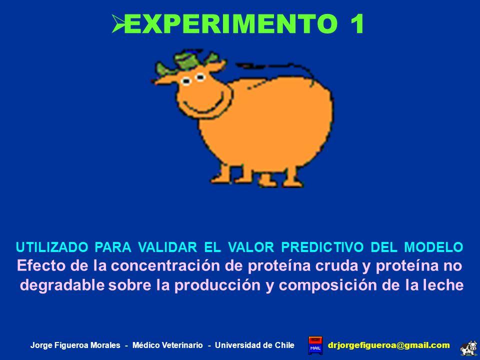 J DAIRY SCI KALSCHEUR 1994 Investigó el efecto de la concentración de proteína cruda y el efecto de la concentración de proteína no degradable sobre la producción de leche y la composición de la leche Jorge Figueroa Morales - Médico Veterinario - Universidad de Chile drjorgefigueroa @ gmail.com DIETASPROTEÍNA CRUDA %DEGRADABILIDAD % 1 Control 2 LRUP 3 MRUP 4 HRUP 17.4% 15.2 % 53.9% 64.5% 58.6% 53.5%