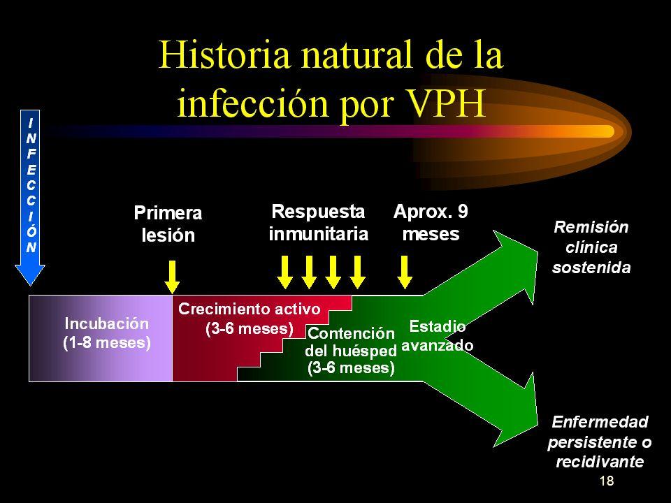 17 Los acontecimientos celulares que se produzcan por la infección por HPV determinarán el desarrollo de dos cuadros anátomo-clínicos radicalmente dis