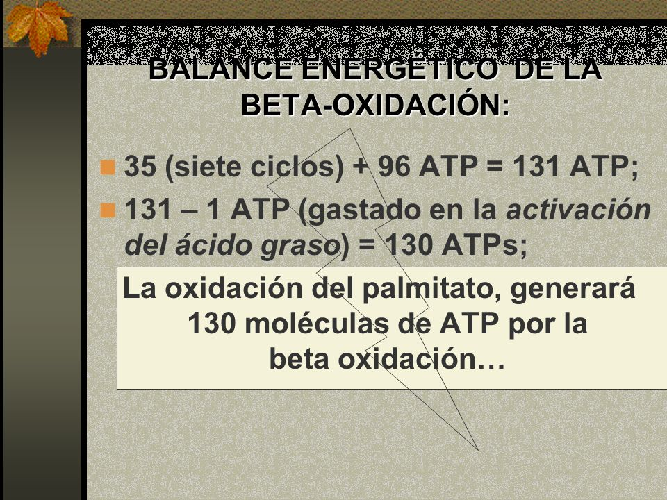 BALANCE ENERGÉTICO DE LA BETA-OXIDACIÓN: 35 (siete ciclos) + 96 ATP = 131 ATP; 131 – 1 ATP (gastado en la activación del ácido graso) = 130 ATPs; La o
