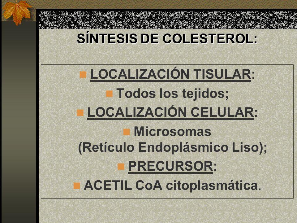 SÍNTESIS DE COLESTEROL: LOCALIZACIÓN TISULAR: Todos los tejidos; LOCALIZACIÓN CELULAR: Microsomas (Retículo Endoplásmico Liso); PRECURSOR: ACETIL CoA