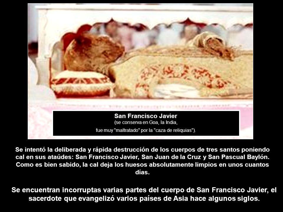 San Francisco Javier (se conserva en Goa, la India, fue muy