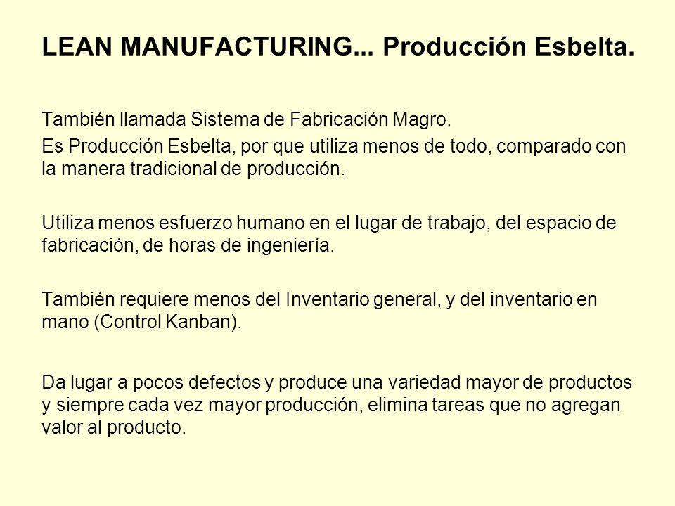 ¿Cómo alcanzamos la Manufactura Esbelta.Los Problemas.