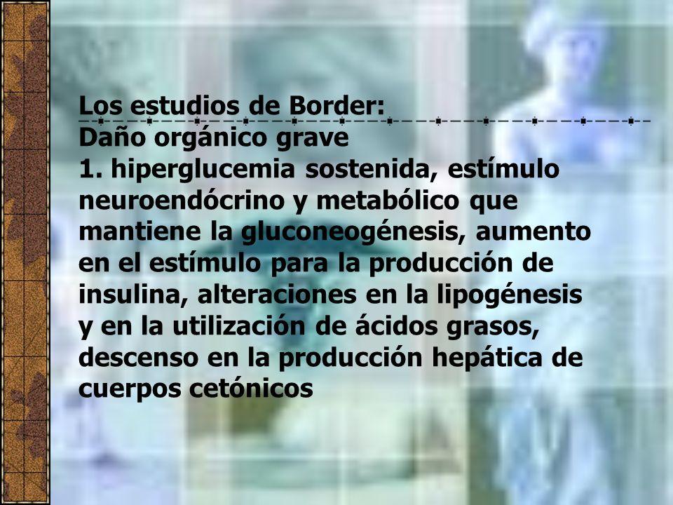 Los estudios de Border: Daño orgánico grave 1. hiperglucemia sostenida, estímulo neuroendócrino y metabólico que mantiene la gluconeogénesis, aumento