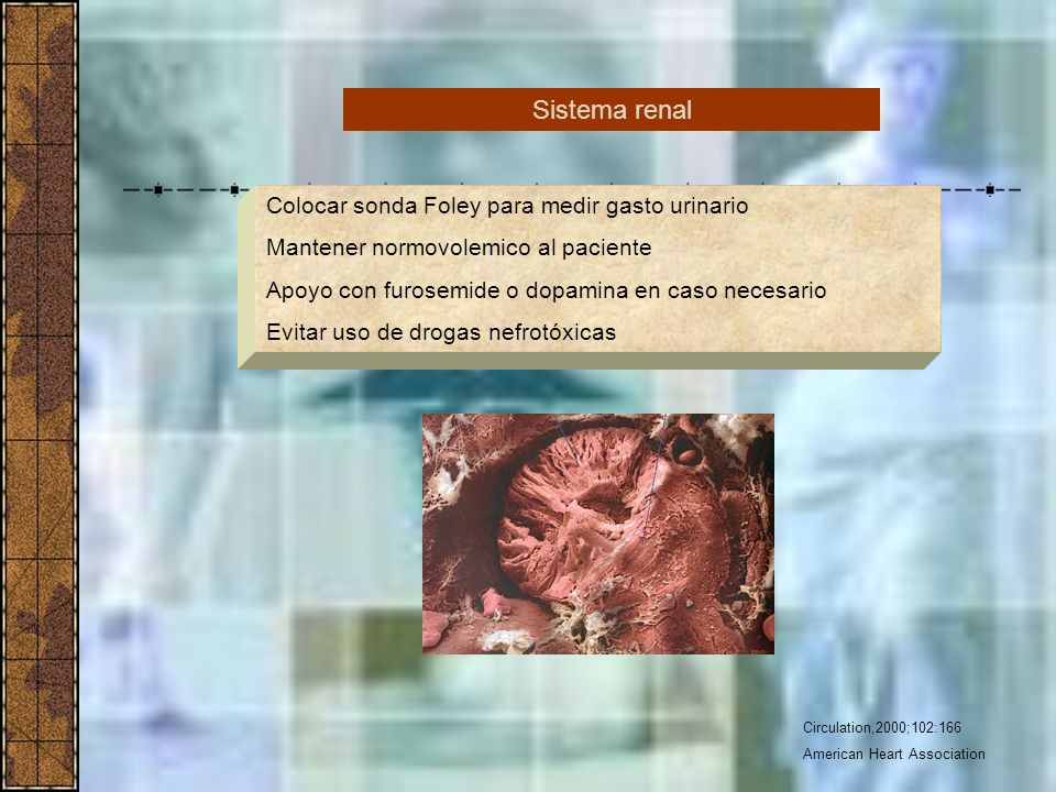 Circulation,2000;102:166 American Heart Association Colocar sonda Foley para medir gasto urinario Mantener normovolemico al paciente Apoyo con furosem