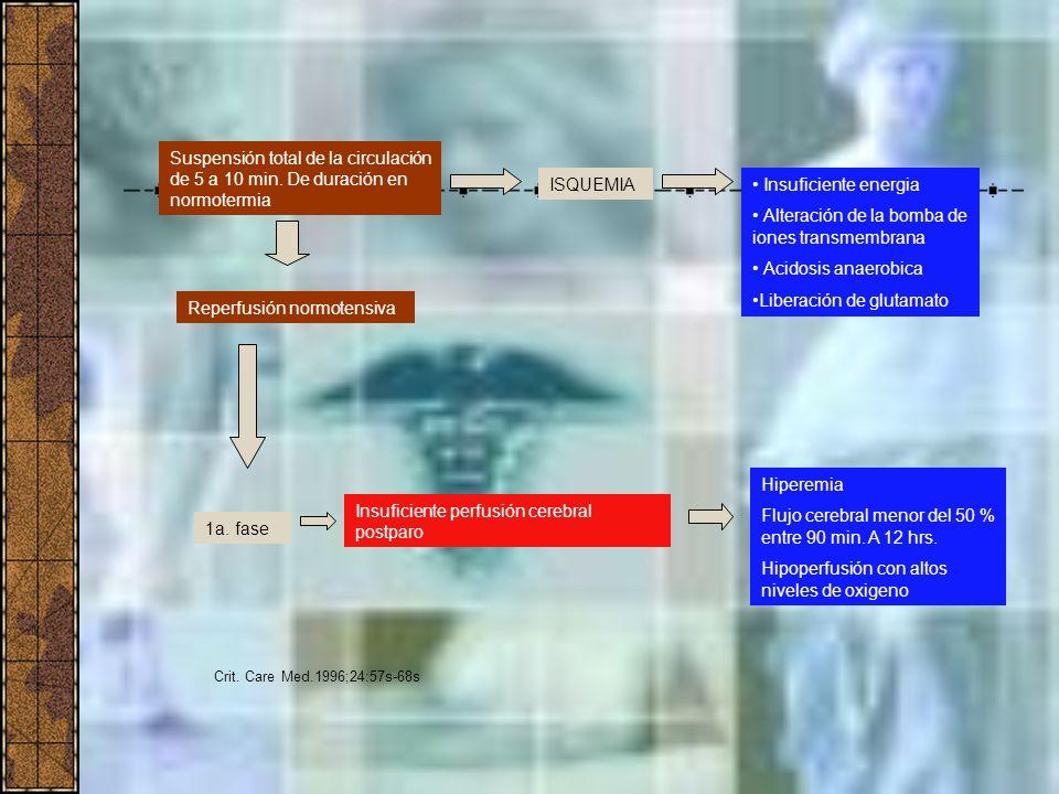 Suspensión total de la circulación de 5 a 10 min. De duración en normotermia Reperfusión normotensiva ISQUEMIA Insuficiente energia Alteración de la b