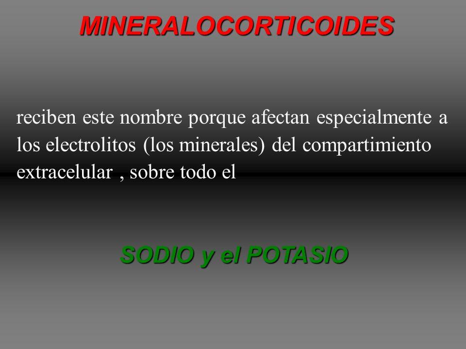 CORTICOSTEROIDES La corteza suprarrenal secreta los dos tipos principales de hormonas 1.MINERALOCORTICOIDES 2.GLUCOCORTICOIDES Además de estas secreta