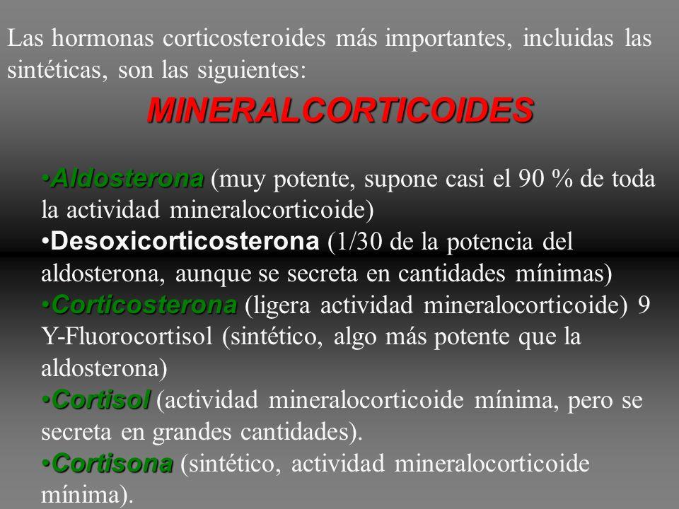 aldosteronacortisol Además de la aldosterona y del cortisol, la corteza suprarrenal suele secretar pequeñas cantidades de otros esteroides con activid