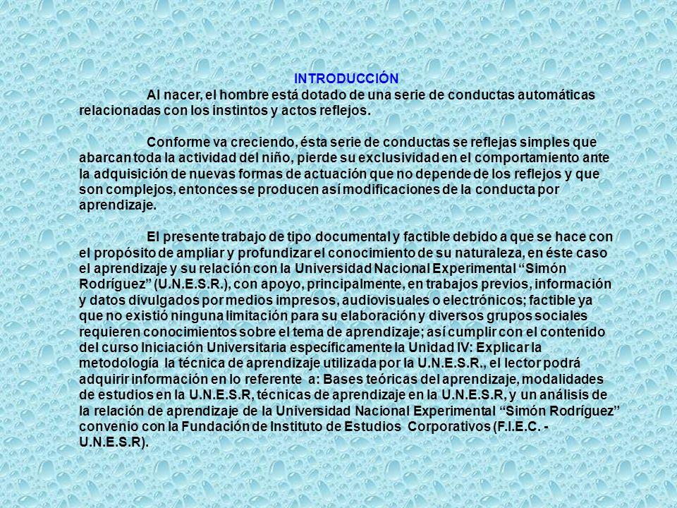 TÉCNICAS DE APRENDIZAJE DE LA U.N.E.S.R.