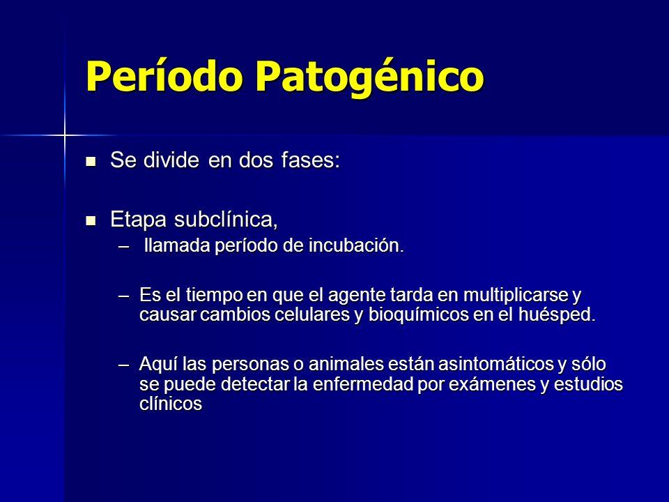 Período Patogénico Se divide en dos fases: Se divide en dos fases: Etapa subclínica, Etapa subclínica, – llamada período de incubación. –Es el tiempo