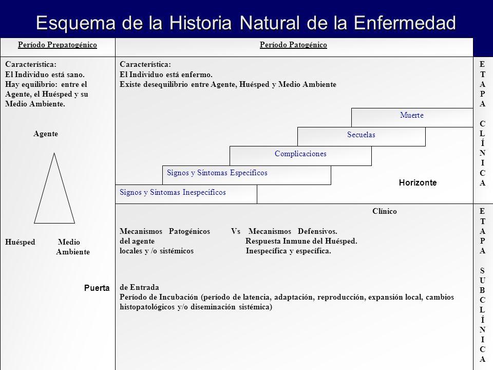 Período PrepatogénicoPeríodo Patogénico Característica: El Individuo está sano. Hay equilibrio: entre el Agente, el Huésped y su Medio Ambiente. Agent