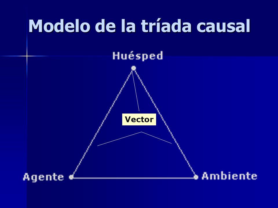 Modelo de la tríada causal Vector