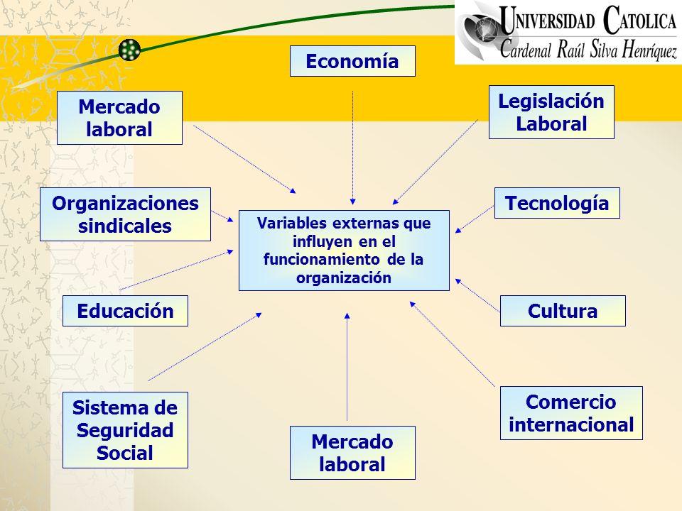 Variables externas que influyen en el funcionamiento de la organización Mercado laboral Organizaciones sindicales Educación Sistema de Seguridad Socia