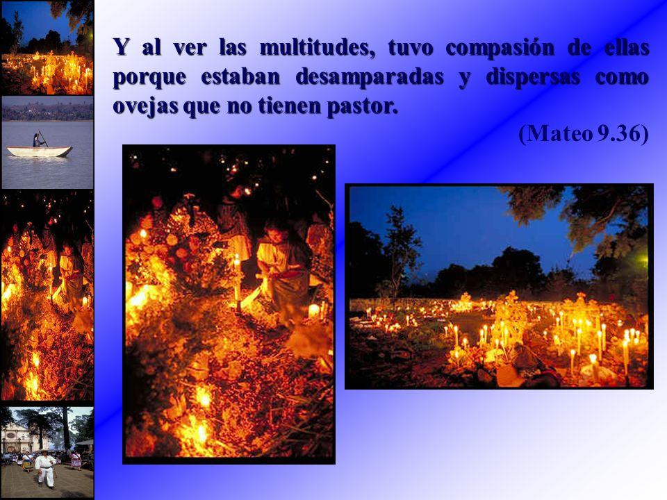 Y al ver las multitudes, tuvo compasión de ellas porque estaban desamparadas y dispersas como ovejas que no tienen pastor. (Mateo 9.36)
