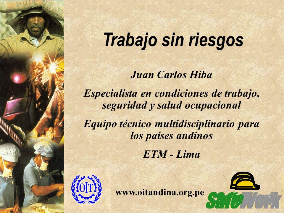 Trabajo sin riesgos Juan Carlos Hiba Especialista en condiciones de trabajo, seguridad y salud ocupacional Equipo técnico multidisciplinario para los