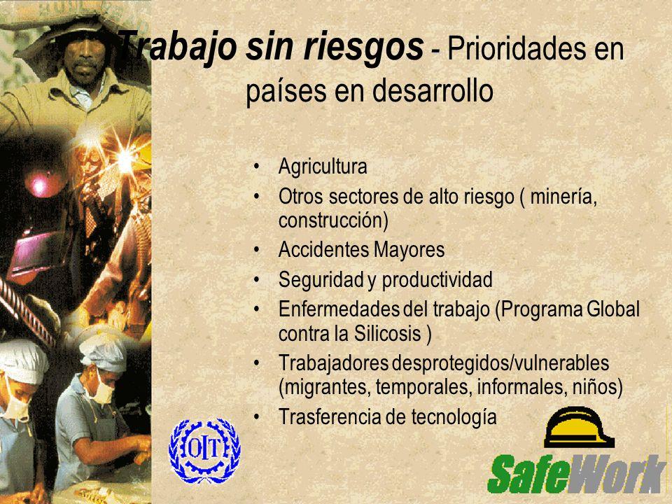- Trabajo sin riesgos - Prioridades en países en desarrollo Agricultura Otros sectores de alto riesgo ( minería, construcción) Accidentes Mayores Segu