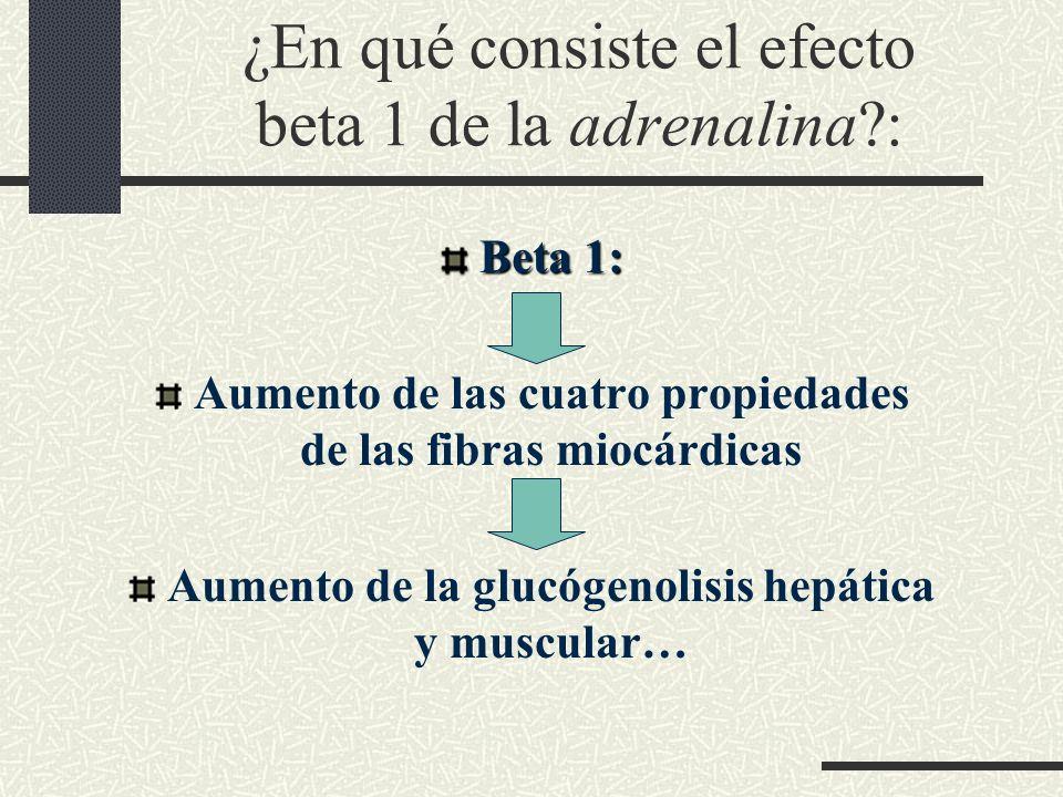 ¿En qué consiste el efecto beta 1 de la adrenalina?: Beta 1: Aumento de las cuatro propiedades de las fibras miocárdicas Aumento de la glucógenolisis