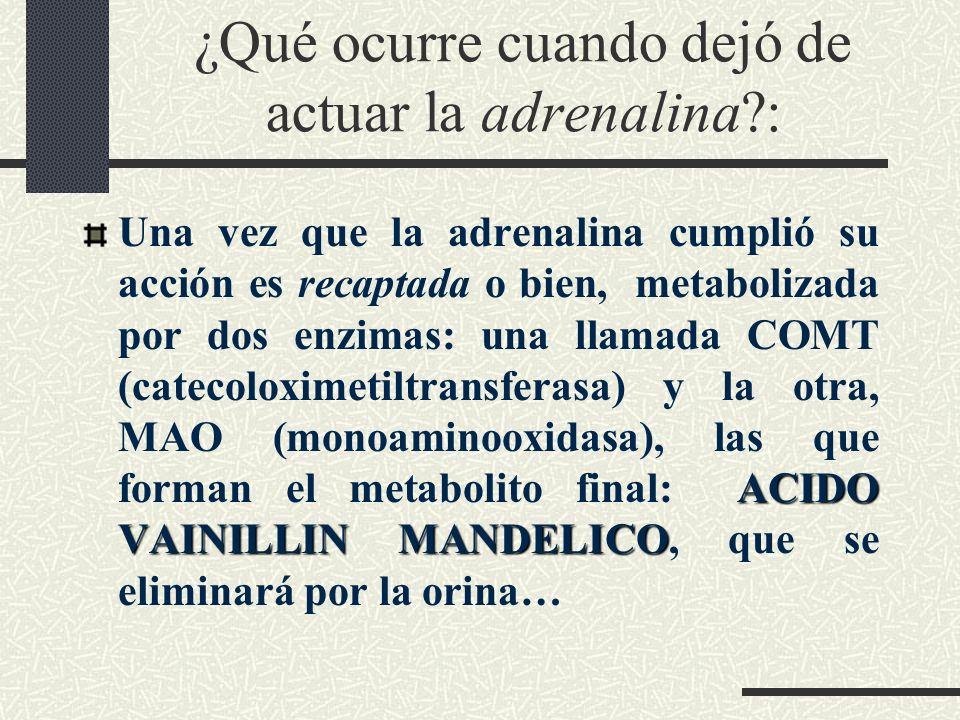 ¿Qué ocurre cuando dejó de actuar la adrenalina?: ACIDO VAINILLIN MANDELICO Una vez que la adrenalina cumplió su acción es recaptada o bien, metaboliz