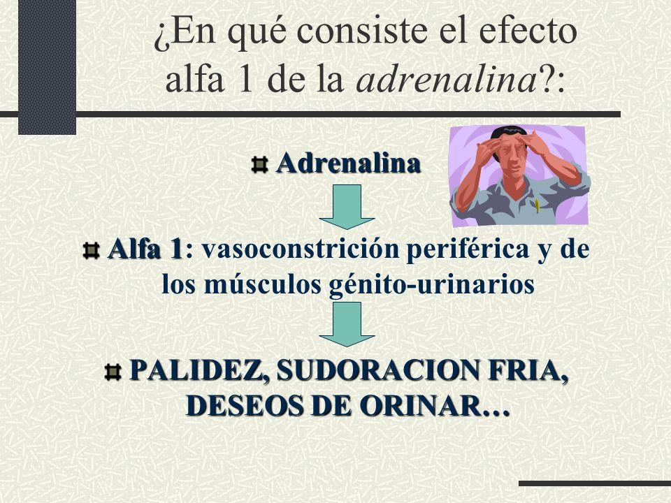 ¿En qué consiste el efecto alfa 1 de la adrenalina?: Adrenalina Alfa 1 Alfa 1: vasoconstrición periférica y de los músculos génito-urinarios PALIDEZ,