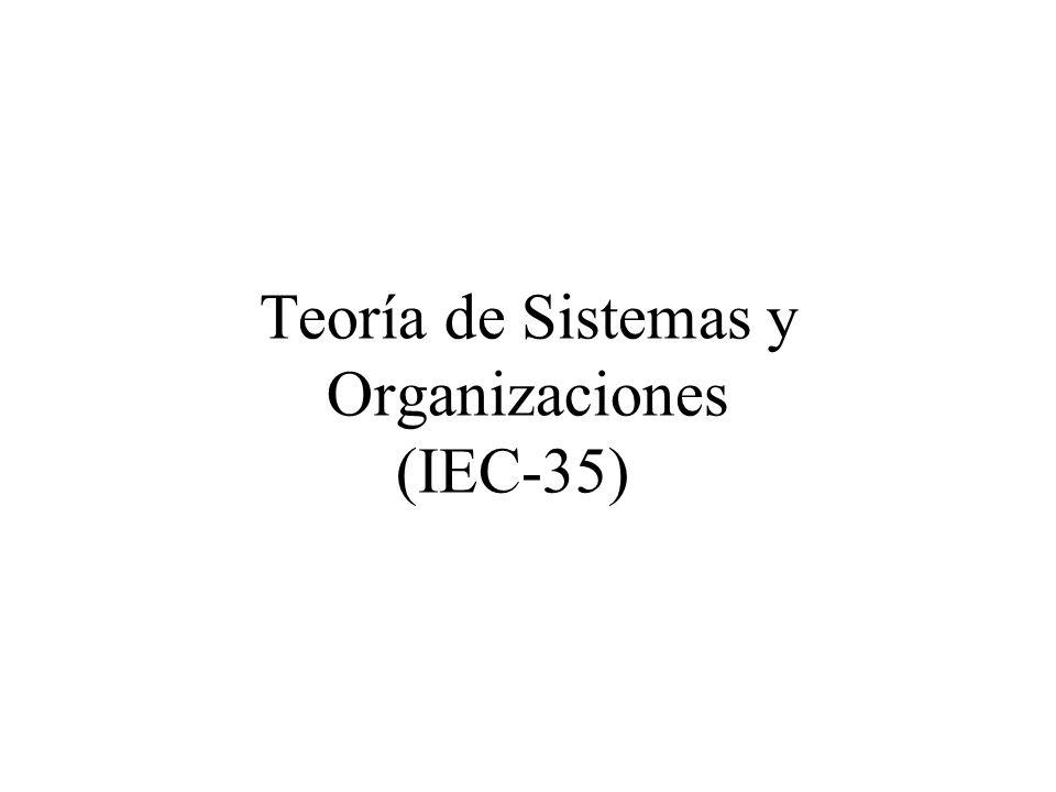 Teoría de Sistemas y Organizaciones (IEC-35)