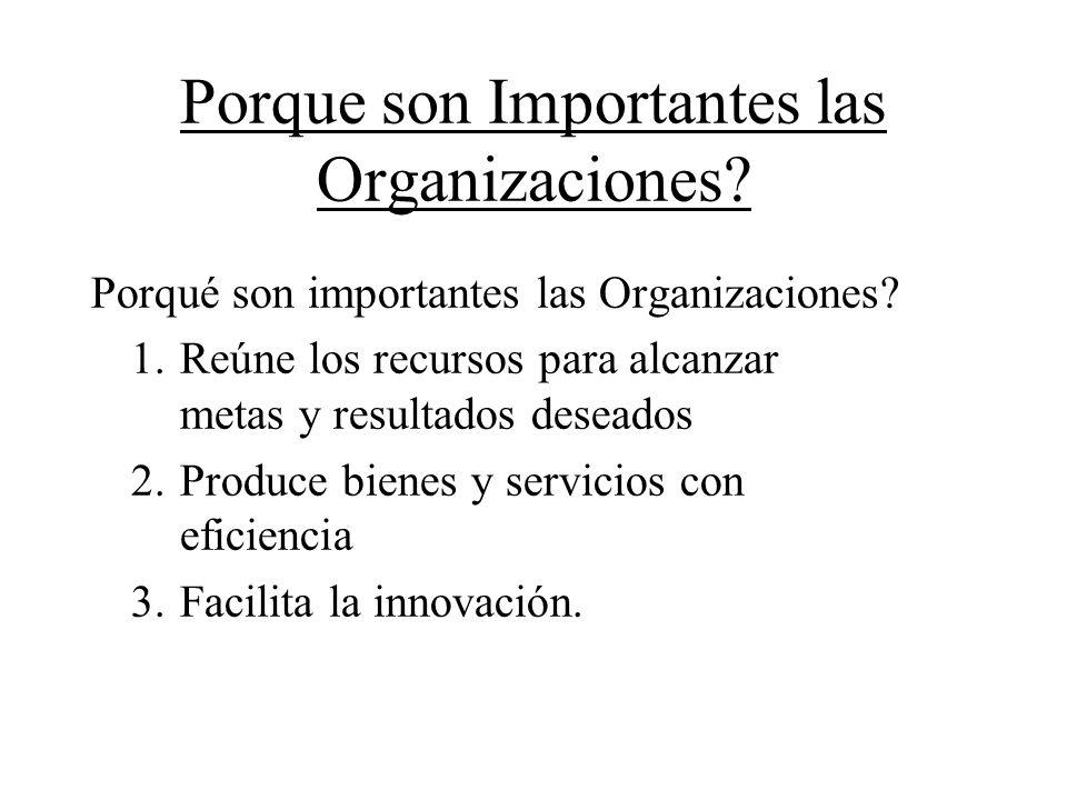 Porque son Importantes las Organizaciones? Porqué son importantes las Organizaciones? 1. Reúne los recursos para alcanzar metas y resultados deseados