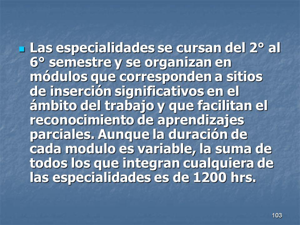 103 Las especialidades se cursan del 2° al 6° semestre y se organizan en módulos que corresponden a sitios de inserción significativos en el ámbito de
