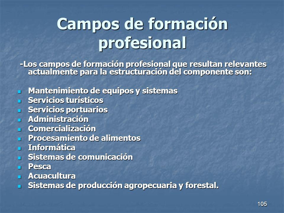 105 Campos de formación profesional -Los campos de formación profesional que resultan relevantes actualmente para la estructuración del componente son