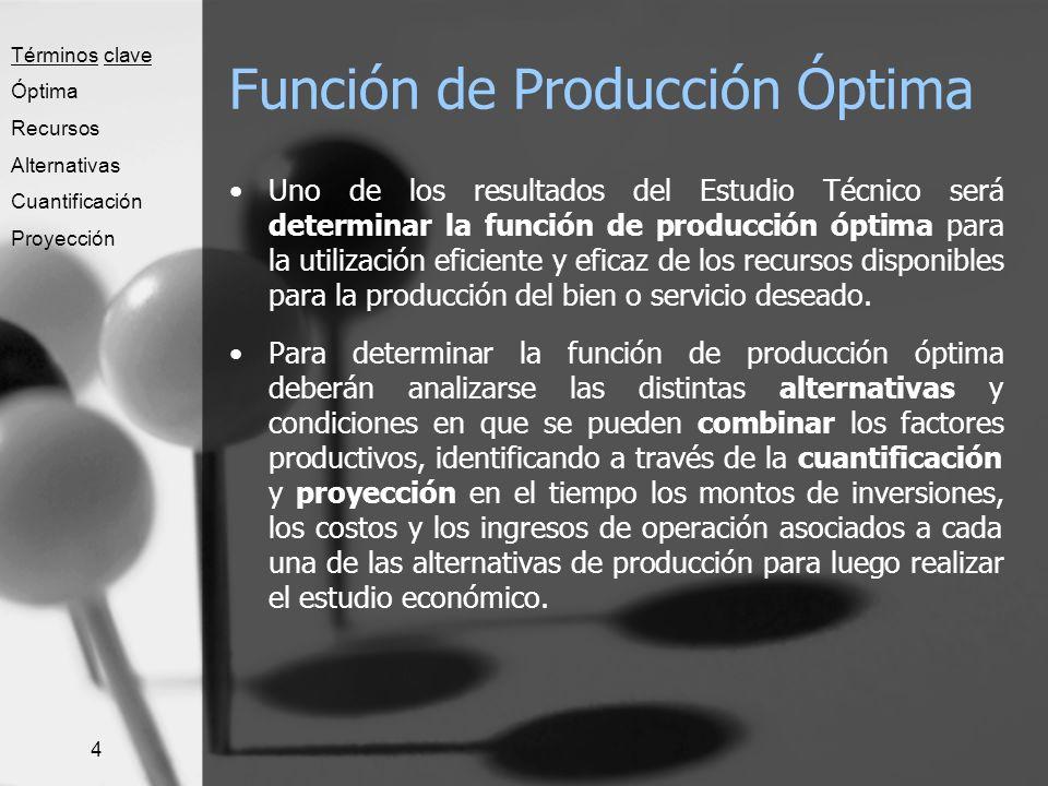 4 Función de Producción Óptima Uno de los resultados del Estudio Técnico será determinar la función de producción óptima para la utilización eficiente