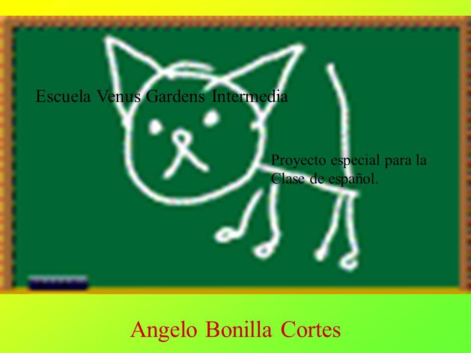 Angelo Bonilla Cortes Escuela Venus Gardens Intermedia Proyecto especial para la Clase de español.
