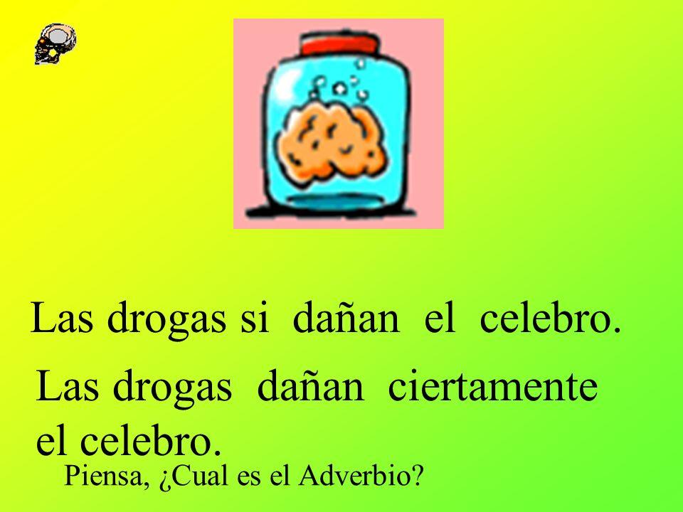 Las drogas si dañan el celebro. Las drogas dañan ciertamente el celebro. Piensa, ¿Cual es el Adverbio?