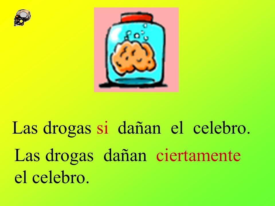 Las drogas si dañan el celebro. Las drogas dañan ciertamente el celebro.