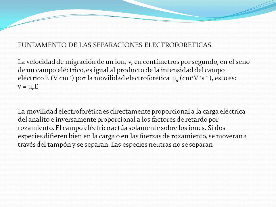 FUNDAMENTO DE LAS SEPARACIONES ELECTROFORETICAS La velocidad de migración de un ion, v, en centímetros por segundo, en el seno de un campo eléctrico,