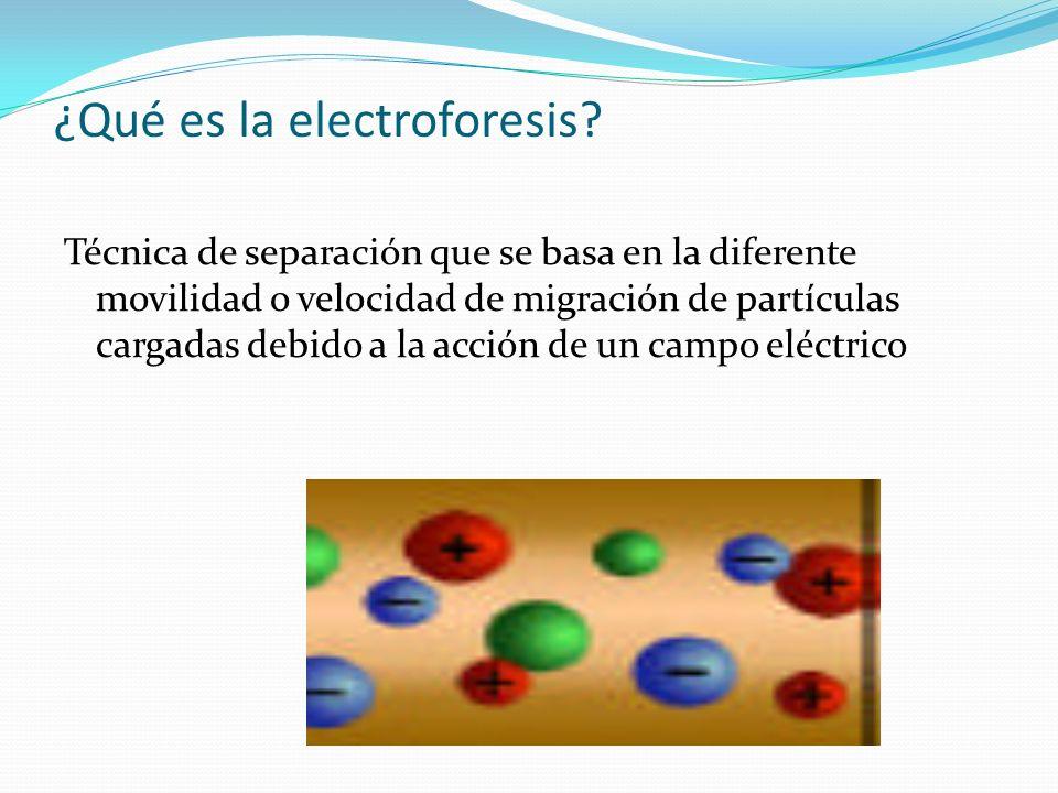 ¿Qué es la electroforesis? Técnica de separación que se basa en la diferente movilidad o velocidad de migración de partículas cargadas debido a la acc