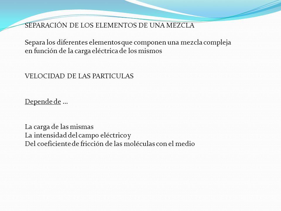 SEPARACIÓN DE LOS ELEMENTOS DE UNA MEZCLA Separa los diferentes elementos que componen una mezcla compleja en función de la carga eléctrica de los mis