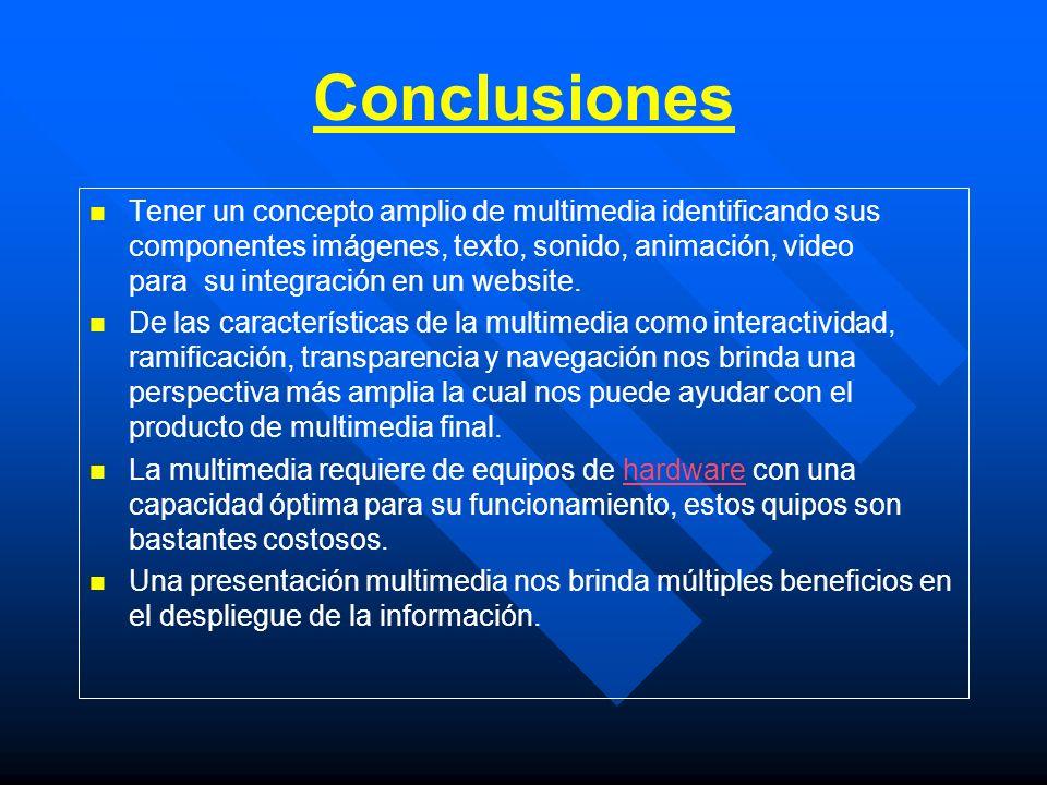 Conclusiones Tener un concepto amplio de multimedia identificando sus componentes imágenes, texto, sonido, animación, video para su integración en un